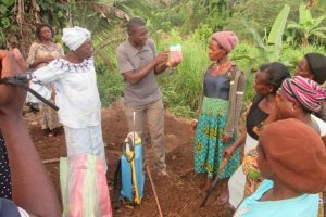 Women in Agriculture -  ICENECDEV