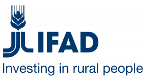 International Fund for Agricultural Development logo